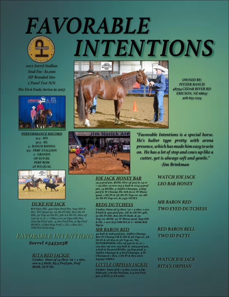 Favorable Intentions Stud Page