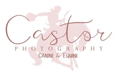 http://castorpetphotography.com